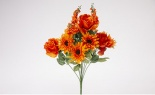 Aster Mum Daisy Bush X 14 Orange