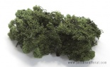 8 Oz Preserved Reindeer Moss Forest Green