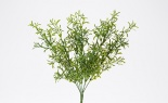 Artemisia Bush Green