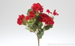 Geranium Bush X7 Red